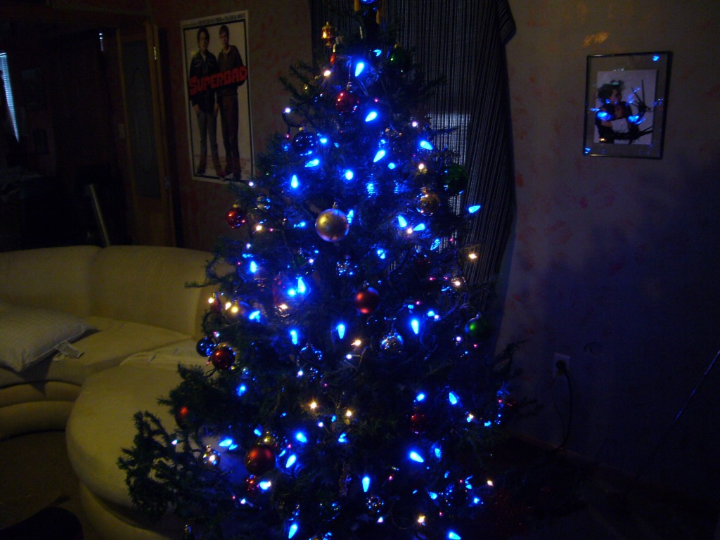 Blue House Christmas Tree 1024x768 Design Christmas Tree in Best Position on your Home