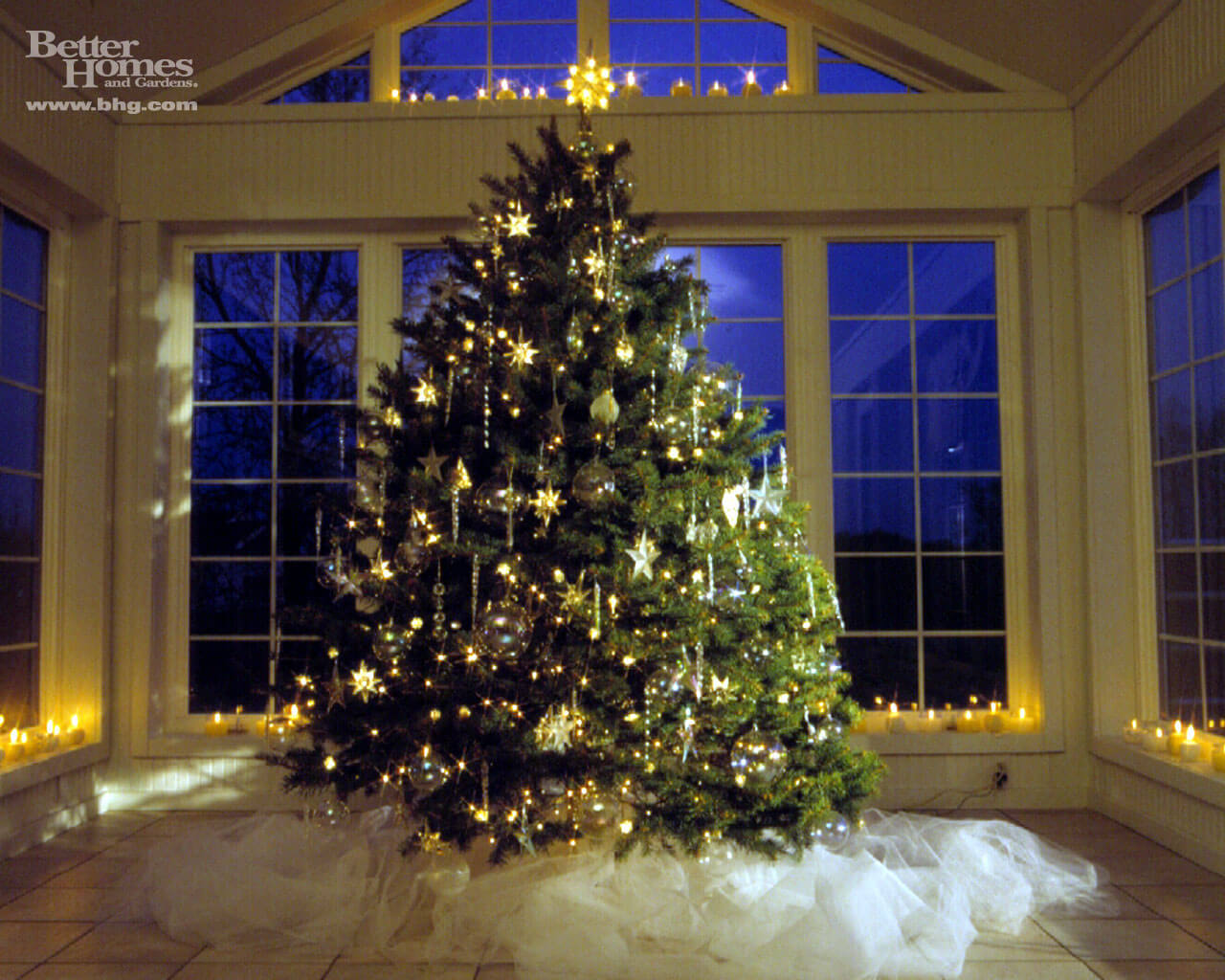 Design Christmas Tree in Best Position on your Home
