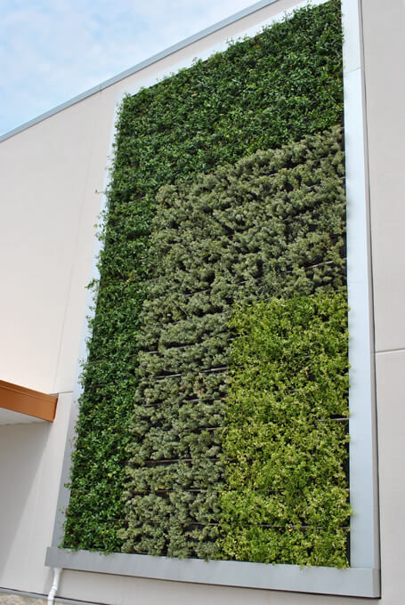Awesome Client: Lowes Food Stores Inc. Architect: BAI Architects Landscape  Architect: None Green Wall Designer(s) : Debbie Kotalic