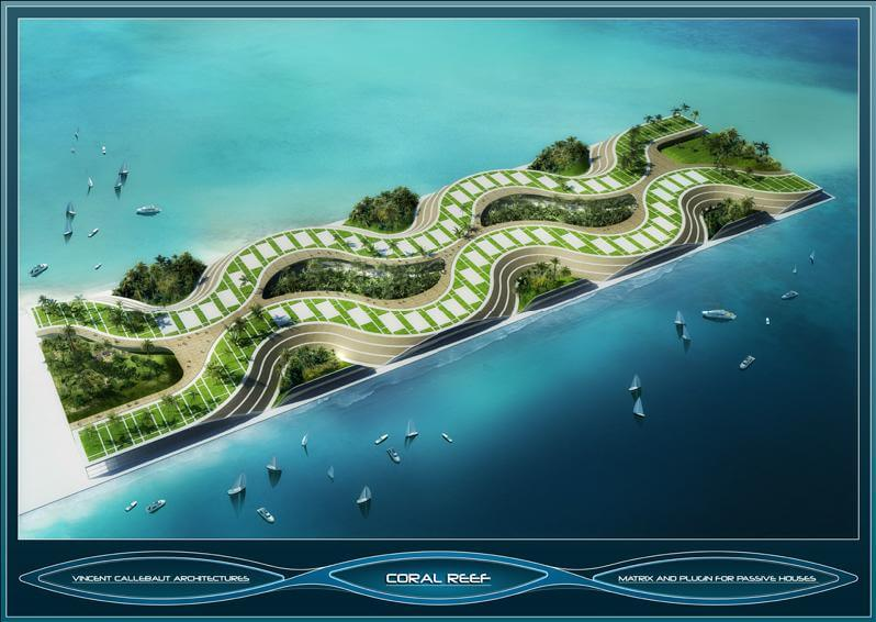 Coral _Reef_project (7)
