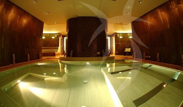 sauna pool.jpg 5 5 Modern Types of Sauna Design
