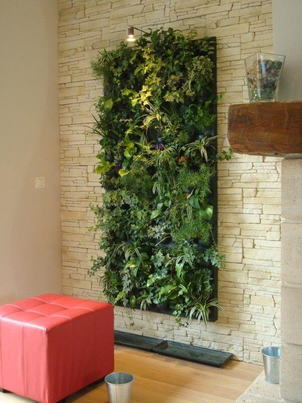DSC01098b Add Greenery to Your Interior Space Using Vertical Gardens