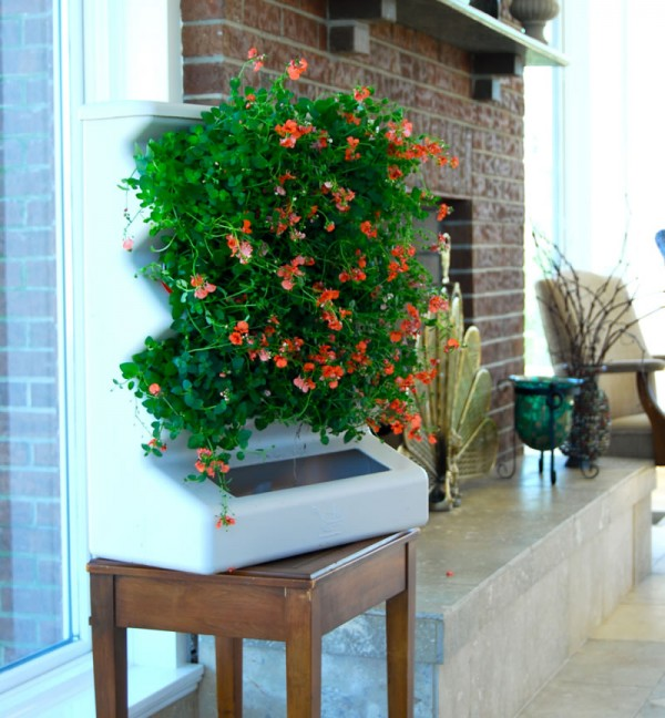 Indoor Home Vertical Garden Design Ideas Aria Tabletop Evo Organic Flowers 600x648 Add Greenery to Your Interior Space Using Vertical Gardens