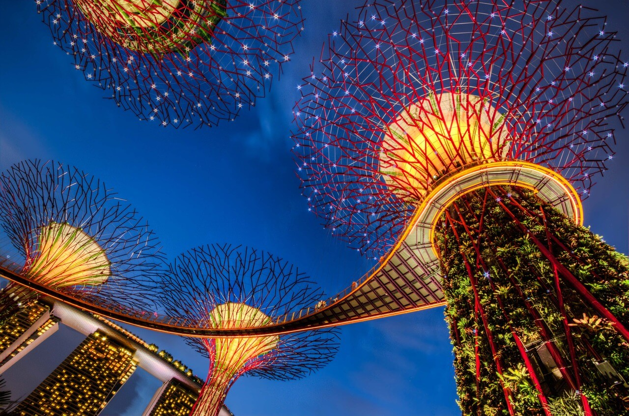 Super Trees || Gardens By The Bay