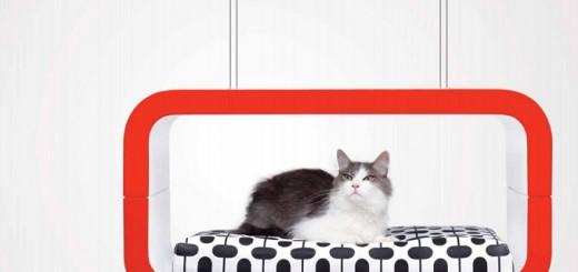 Cat-modern-furniture
