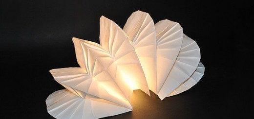 Coralina-table-light