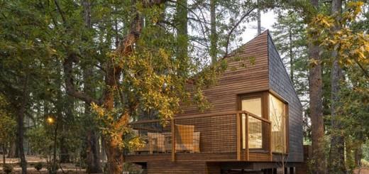 Woodland-cabins-in-Pedras-Salgadas-01