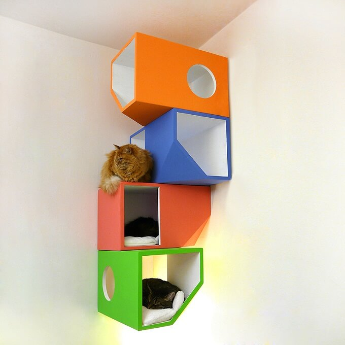 Catissa-colored-modules