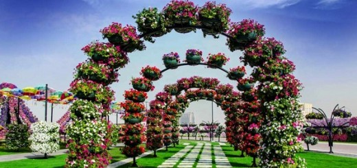 Flower-covered-arches