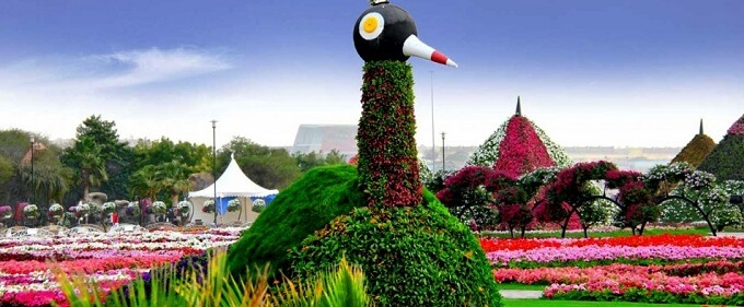 The World's Biggest and Unique Natural Flower Garden- Dubai's ...