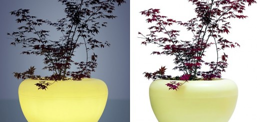 Scoop-Moonlight-planter