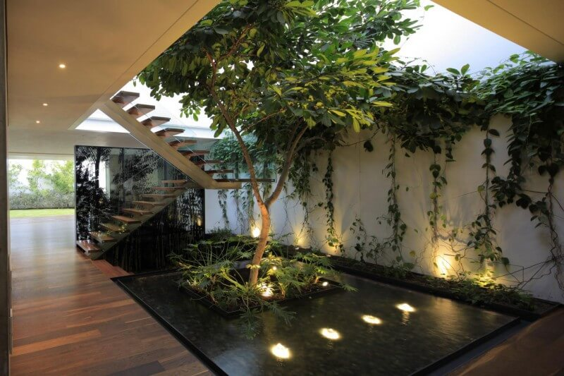 5 Factors to Consider to Set Up an Indoor Garden Interior Design