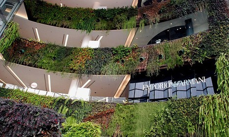 Brief Study on Five Picturesque Vertical Gardens: An Overview