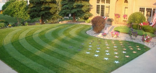 California-s-landscaping
