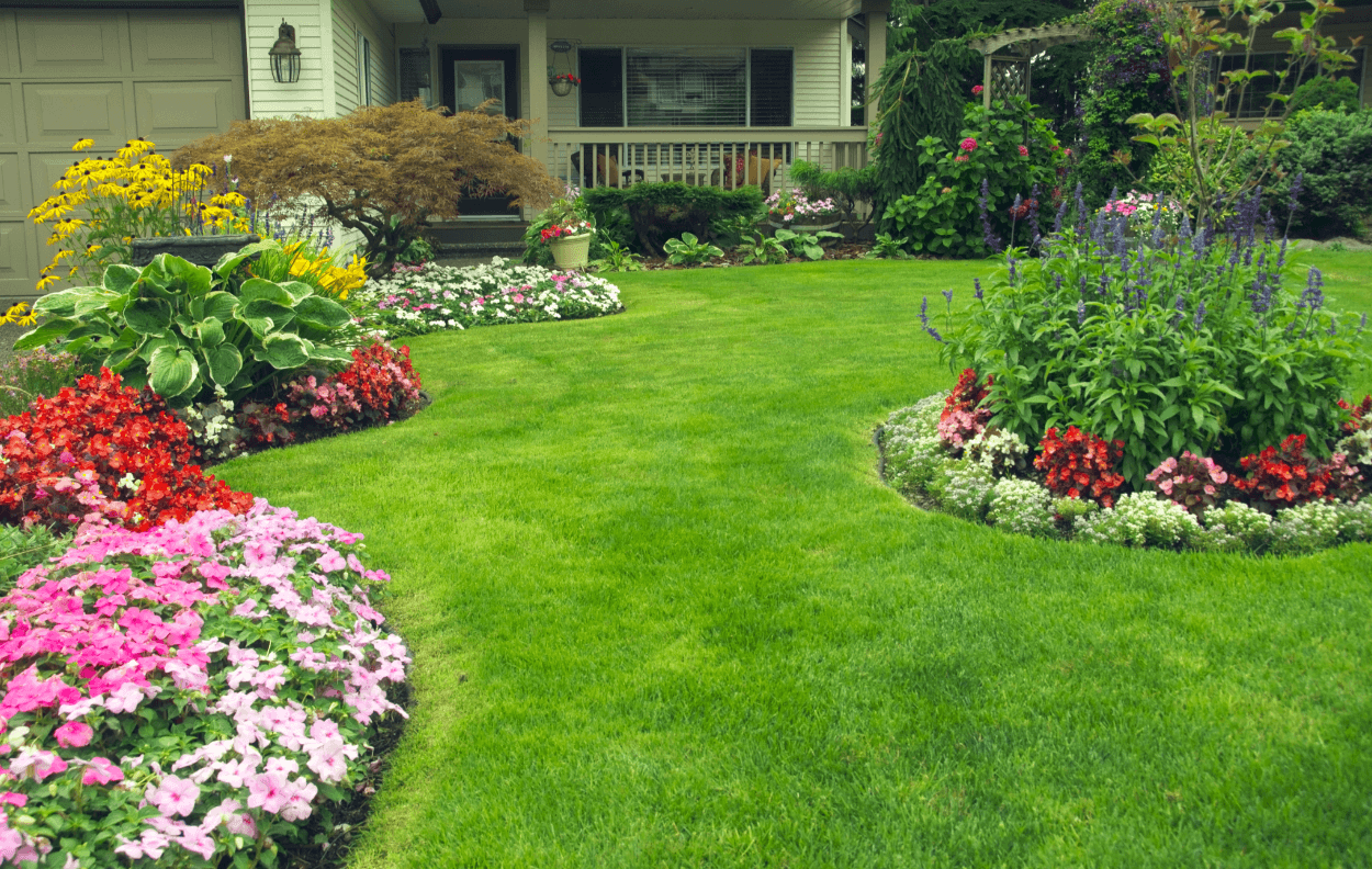 7 ideas for your landscaping project interior design for Design your yard with plants