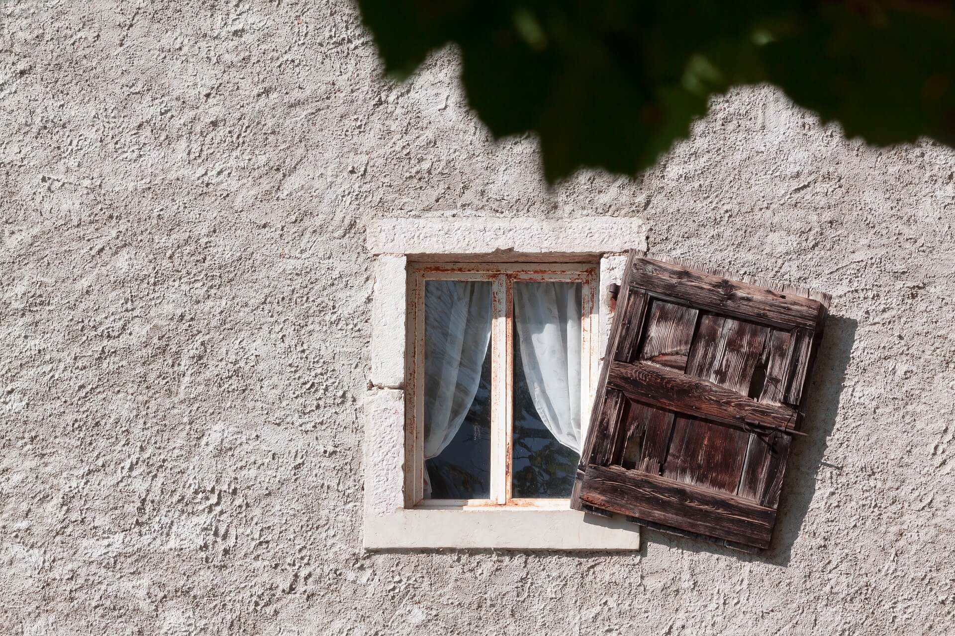5 types of windows you need to know about before building for I need new windows for my house