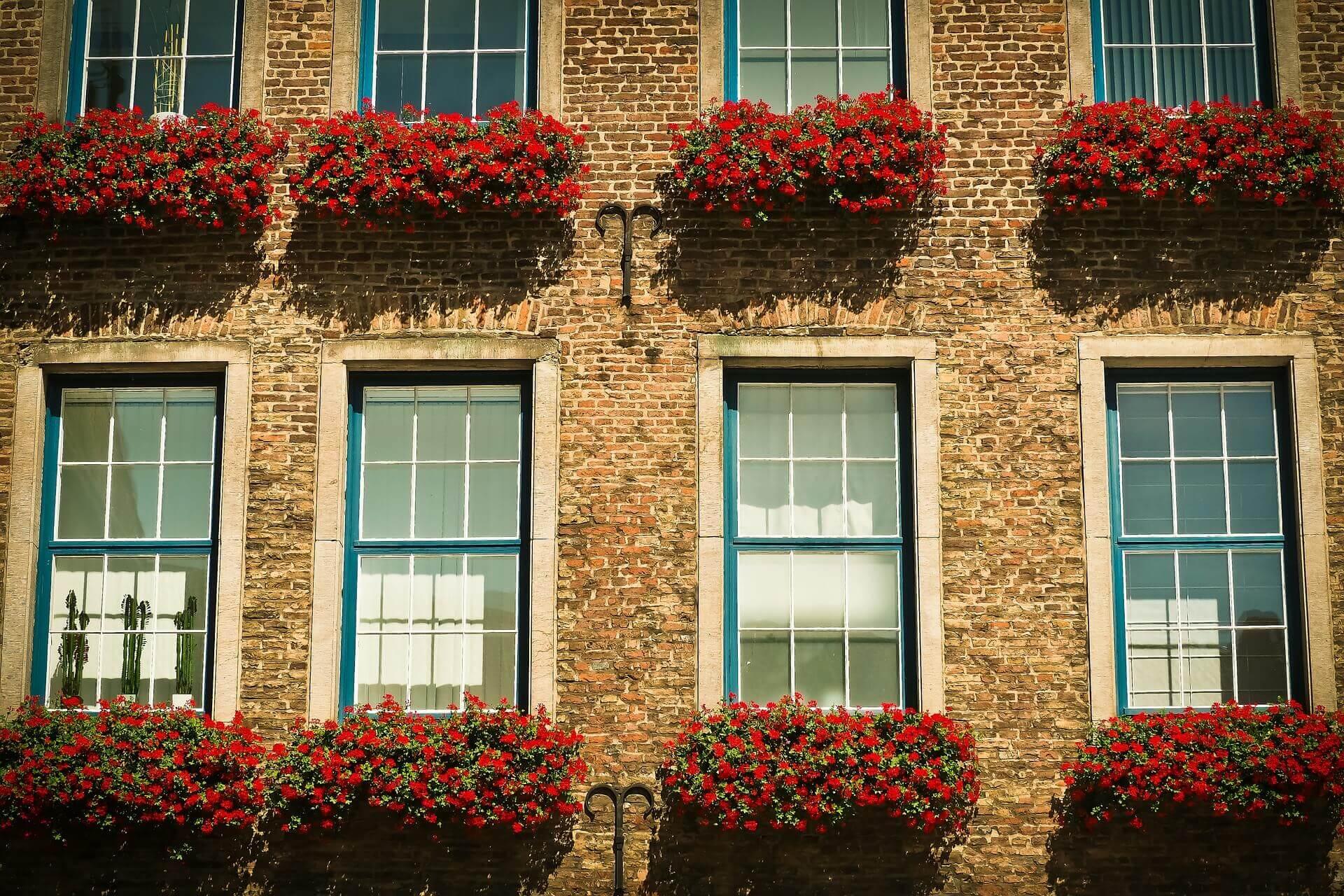 architecture windows
