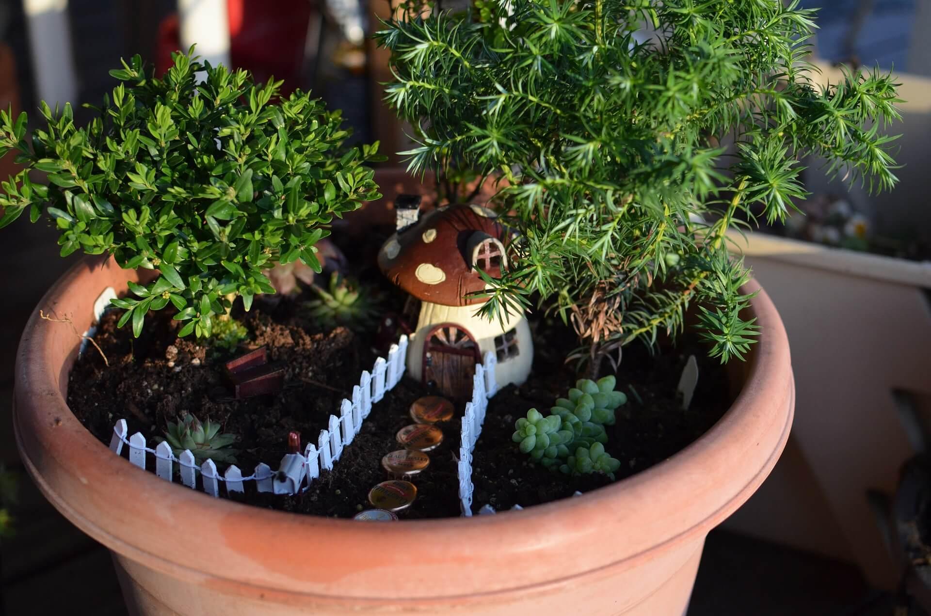 Indoor Gardening Tips, Ideas & Techniques